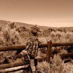 Bethany Steadman Fence
